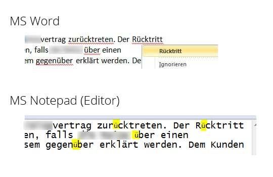 Sonderzeichen Fehler MS Word
